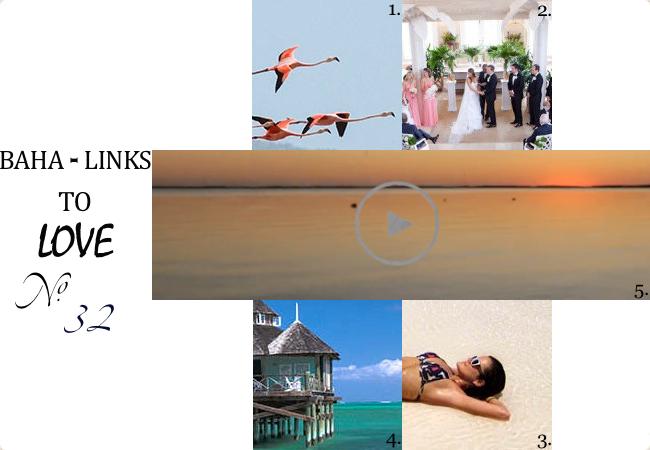 No. 32_Inagua Flamingo Bahamas_Lyford Cay Wedding Bahamas_Long Island_Harbour Island_Kamalame Cay Special Travel Offer