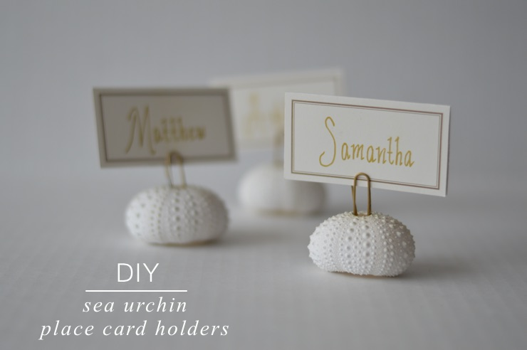DIY: Easy Sea Urchin Place Card Holders