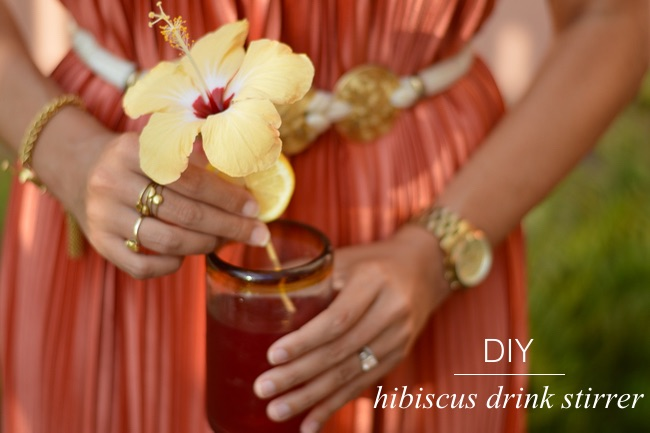 Hibiscus Drink Stirrer