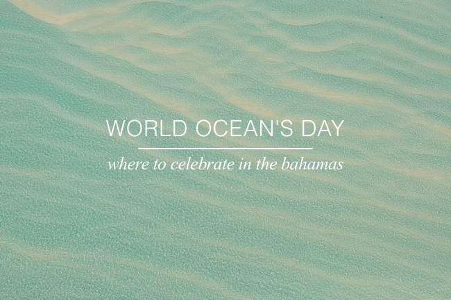World Ocean's Day: Where to Celebrate in The Bahamas